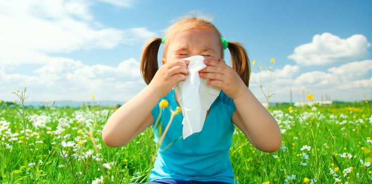 Natural remedies against seasonal allergies